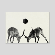 territory - Acrylic by Haryo Yudho Adi Nugroho