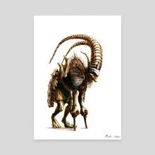 Goblin Shaman - Canvas by Martin Pedersen