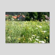 Slovenian Meadows - Acrylic by Liora Bronshtein