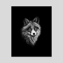 Night Fox - Canvas by Damian Foreman