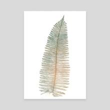 fern.study. - Canvas by claudia chelaru