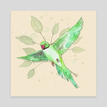 Indian Ringneck Parakeet - Canvas by Bianca Wisseloo