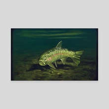 Rainbow Trout: Big Horn River, Fort Smith, Montana - Canvas by Alberto Rey
