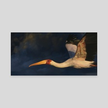 Summer Stork - Canvas by CJ Ellison