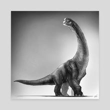 Brachiosaurus - Canvas by Shaun Keenan