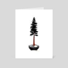 Redwood Bonsai - Art Card by Chris Cerrato