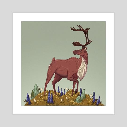 Caribou by Celia  Krampien