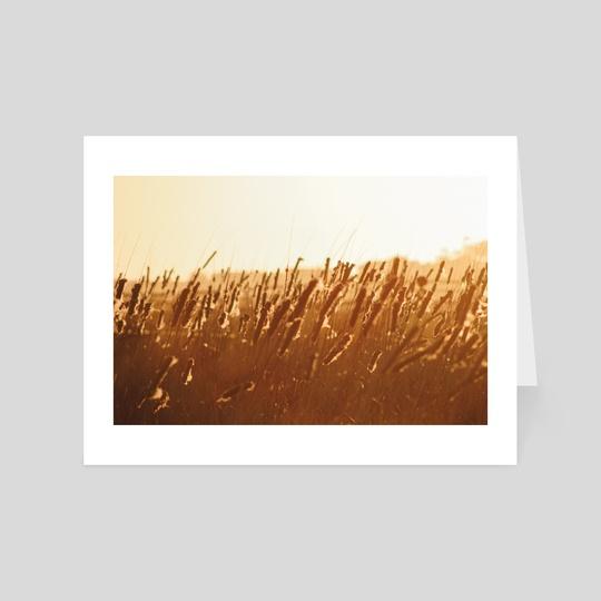 Golden Hour by Sarah Kitzmann