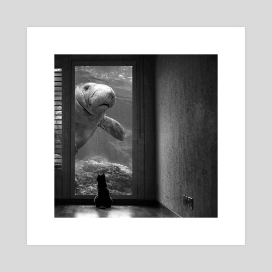Cat & Manatee  by Sarah DeRemer