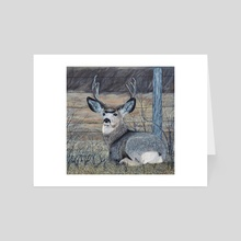 Mule Deer in the Brush - Art Card by Brian Sloan