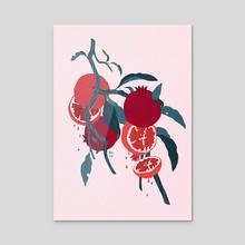 Pomegranates - Acrylic by Samantha Mash