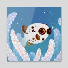 Blackspotted puffer - Acrylic by pikaole