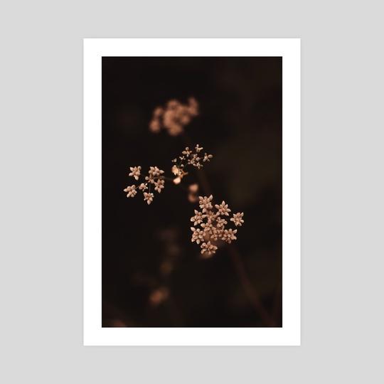 Bouquet by Saadia Shahid