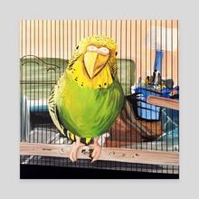 Pet Parrot - Canvas by adam santana
