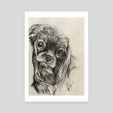 Dog Eyes - Canvas by Patrick Bonsu
