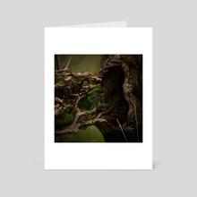 Old Trunkerton - Art Card by Jonathan  Petley