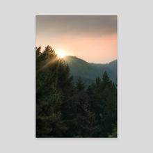 Low Impact - Pine tree - Canvas by Bayu  Adji Purnomo