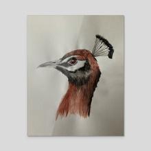Peacock pride - Acrylic by Anna Shapovalova