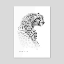Cheetah - Acrylic by Bill Melvin