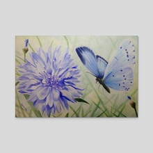 Holly Blue Butterfly - Acrylic by Amanda Monk