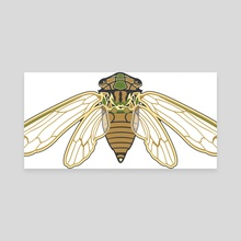 Cicada - Canvas by Isabel Hundley
