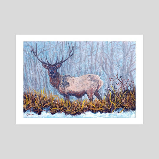 Elk Snow by Mark Green