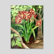 'Minerva' Amaryllis - Acrylic by Fiona Dunn