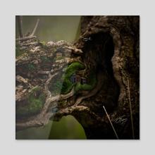 Old Trunkerton - Acrylic by Jonathan  Petley