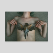 Funeral for Bird II - Canvas by Mark Harless