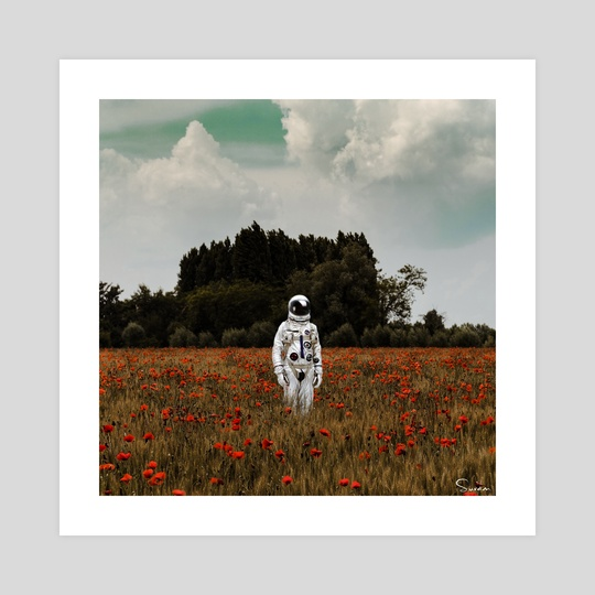Astronaut Poppy Field by Suvam