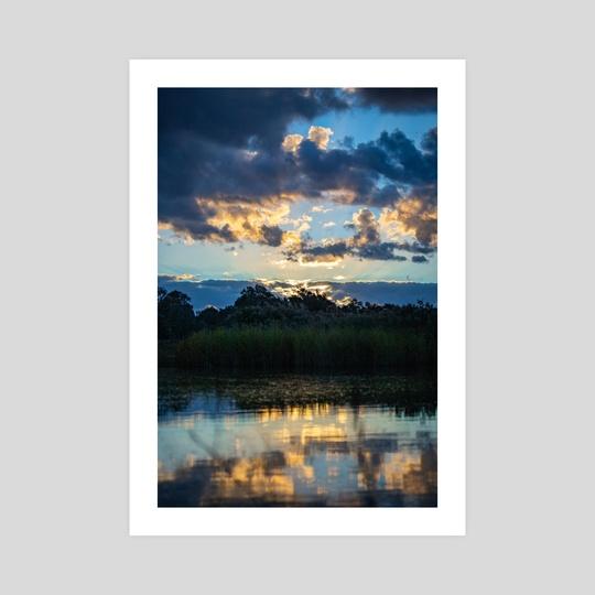 Reflections in the Wetlands by Abbie Zeek