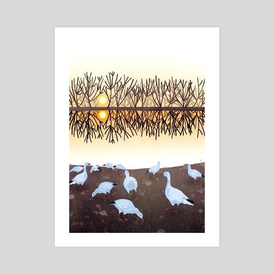 geese at a lake by Lara Paulussen