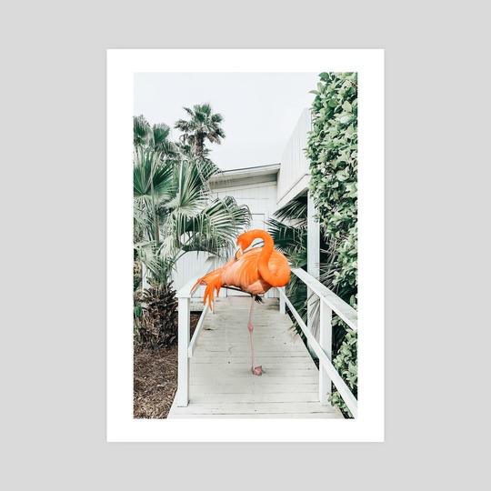 Flamingo Beach House by 83 Oranges