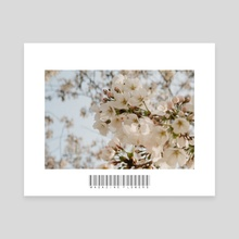 Magazine Flowers - Canvas by John Jackson