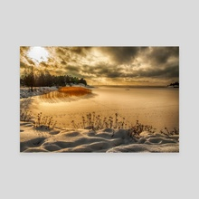 backlight by the sea - Canvas by Stefan Demervall