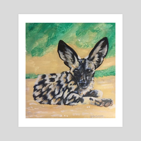 African Hunting Dog Teenager by Tamzyn Revolta