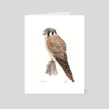 Falcon Watercolor Male - Art Card by JP Lara