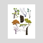 Tree Studies - Art Print by Pamela Zhang