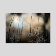 The Last Straw - Canvas by Eirik