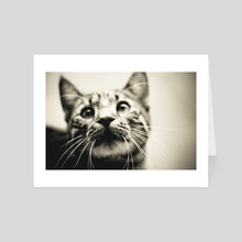 Whiskey the Cat - Art Card by R Baumung