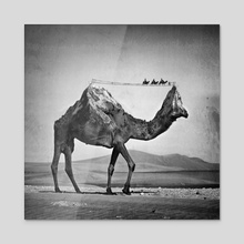 Camel & Mountain - Acrylic by Sarah DeRemer