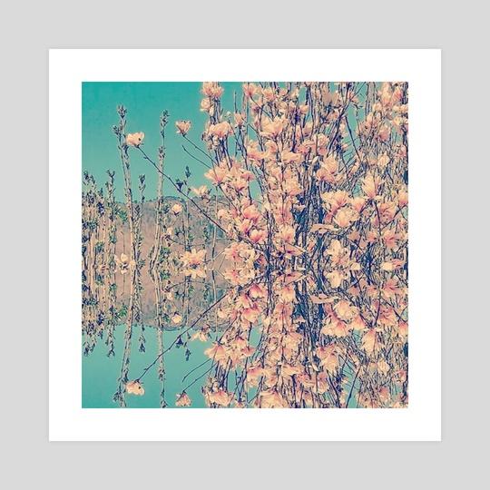 Magnolia  by Sandrina  Hassany