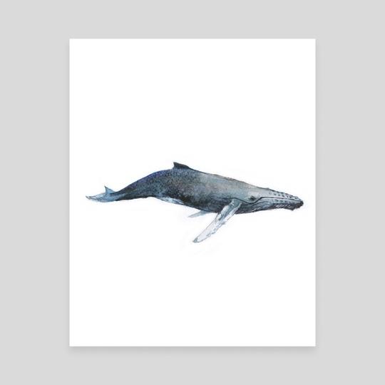 Whale by Dmitry Kaidash