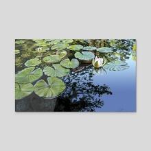 A quiet pond - Acrylic by Sasha