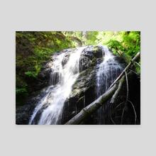 Waterfall - Canvas by Darien Faulkner