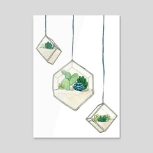 Hanging Succulent Terrariums - Various Shapes - Acrylic by Jennifer Charlee