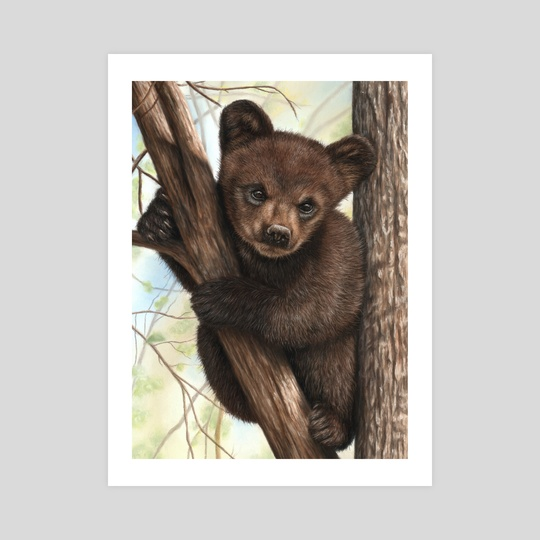 Bear Cub by Richard Macwee
