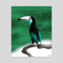 Teal Toucan - Canvas by Alfred Manzano