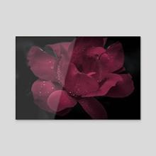 Under the rain - Acrylic by Chiara Cattaruzzi