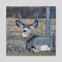 Mule Deer in the Brush - Canvas by Brian Sloan
